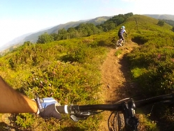 RUTAS GUIADAS MOUNTAIN BIKE